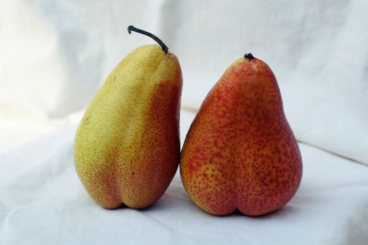 Pears - 10 Healthiest Fruits To Add To Your Diet